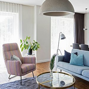 interjero dizaino pavyzdys - namas pavilnyje
