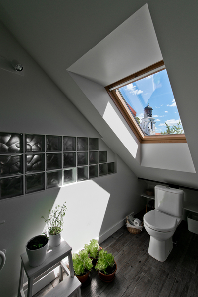 vonios interjeras - palepe uzupyje