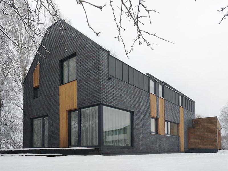 gyvenamojo namo pavilnyje projektas - fasadas #7