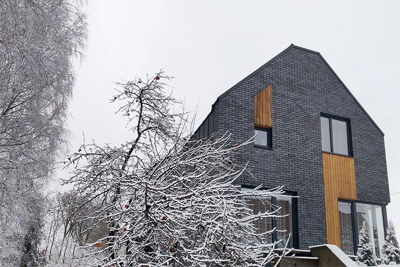 gyvenamojo namo pavilnyje projektas - fasadas #5
