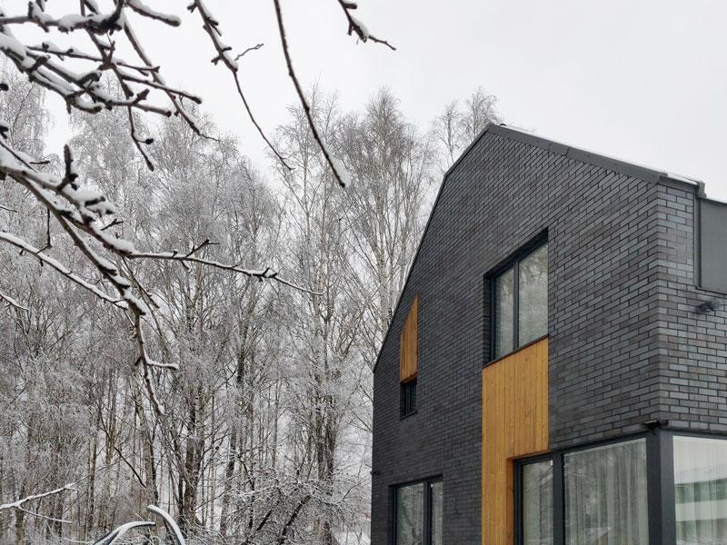 gyvenamojo namo pavilnyje projektas - fasadas #3