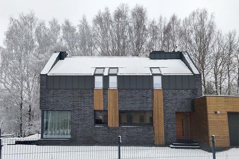 gyvenamojo namo pavilnyje projektas - fasadas #2